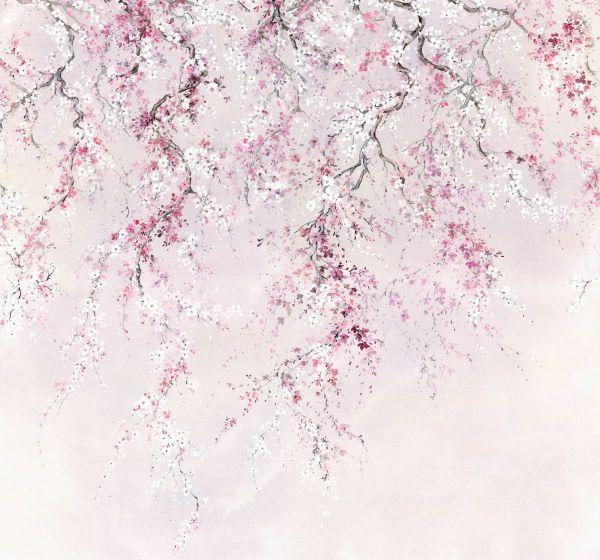 Fototapete Sakura