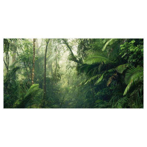 Digitaldruck Fototapete Regenwald