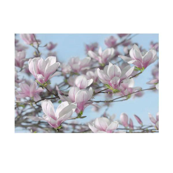 Fototapete Blüten
