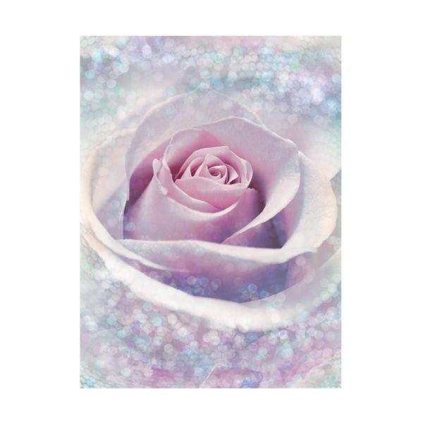 Vlies Fototapete Pearl Rose