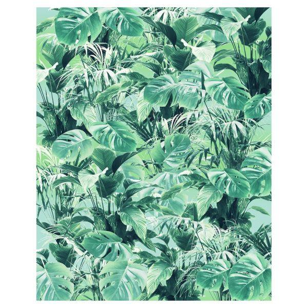 Digitaldruck Fototapete Grünpflanzen