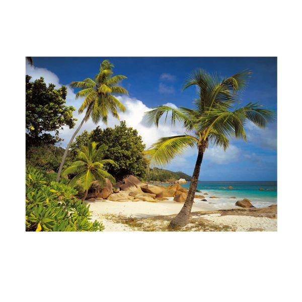 Fototapete Palm Tree