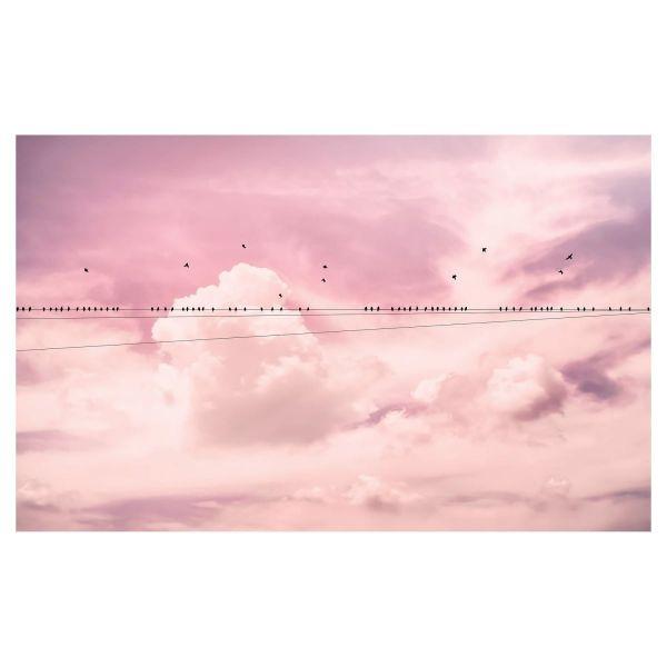Digitaldruck Fototapete Rose Sky groß